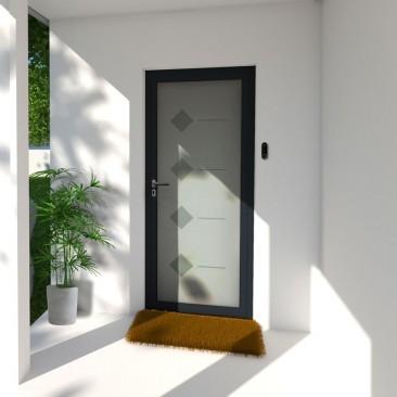 Porta de entrada de Vidro...